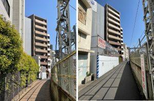 ルフォン上野公園への道